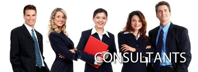 consultants we insure